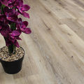 Golden Oak WPC Flooring